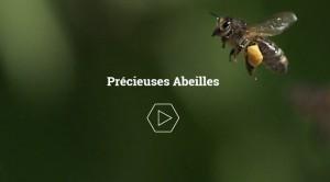 amis-abeilles